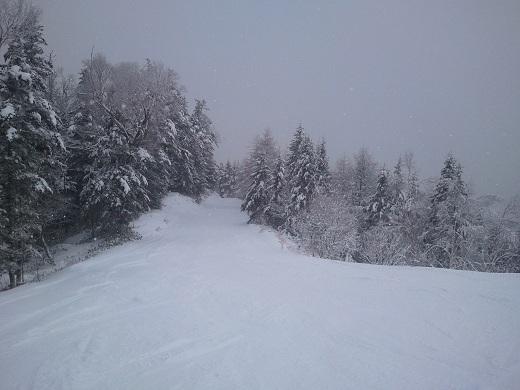 林間コース途中