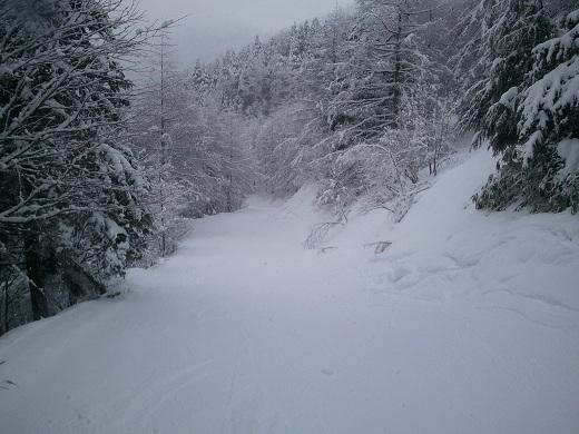 林間コース終盤