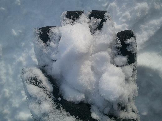 富良野スキー場の雪質
