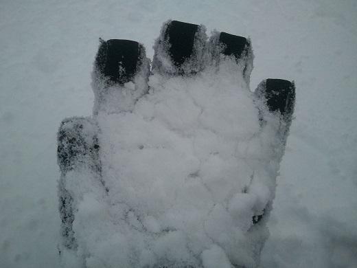 サホロリゾートの雪質