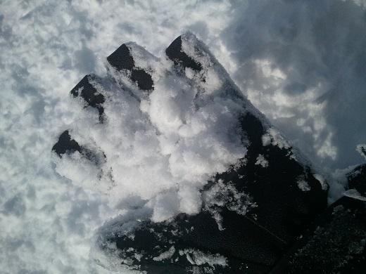 竜王スキーパークの雪質
