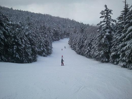 ピラタス蓼科樹氷コースの終盤