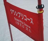 グランプリコースの旗