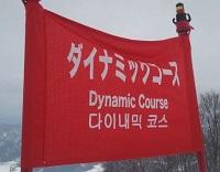 ダイナミックコースの旗