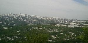 月山の雪と新緑
