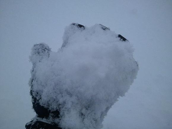 下倉スキー場の雪の見た目