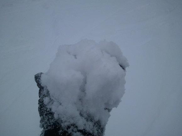 シルキーパウダーコースの雪の見た目