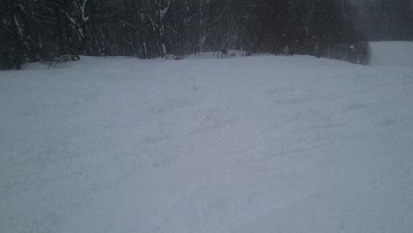 シルキーパウダーコースの斜面の見た目