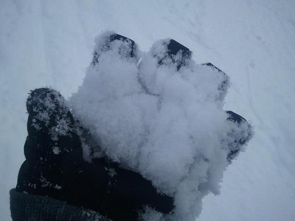 パノラマスキー場の雪の見た目