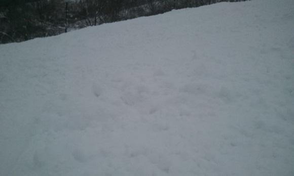 夏油高原スキー場のA4コースのモコモコしている斜面の感じ