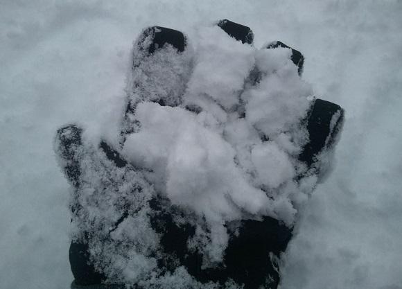 キロロスキー場の雪の見た目