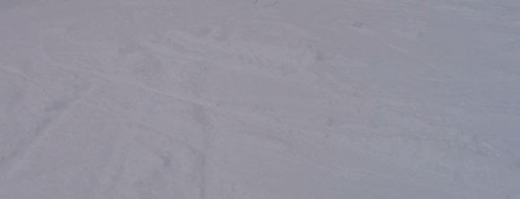 雪が止んだ後のキロロの斜面のエッジの跡