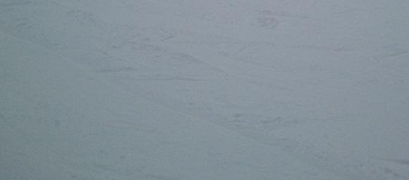 ひるがの高原スキー場の斜面についたエッジの跡