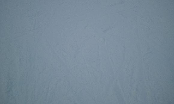 ひるがの高原スキー場の斜面の雪の感じ