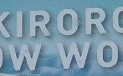 キロロスキー場のパンフレットの一部