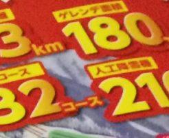 高鷲スノーパーク&ダイナランドの総滑走距離やゲレンデ面積、コース数等